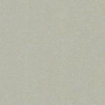 Arpa Fenix-Nano 2628 Zinco Doha