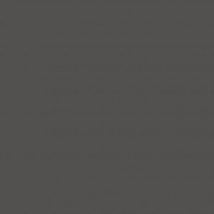 Resopal Verbundelement 10630-TP - Resopal Verbundelement 19,6 mm Traceless Premium Vorderseite 0,8 mm HPL 10630-TP Anthracite Rückseite GGZ 0,8 mm 10622-60 Träger Span P2 E 0,5 18 mm Beidseitig Transportschutzfolie 100% PEFC zertifiziert BV/CdC/6009552 *** Bitte die Verarbeitungshinweise