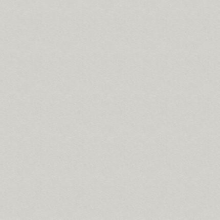 Dekor U 191 PE Hellgrau Perl - Dekorspan U 191 PE Hellgrau Perl 70% PEFC zertifiziert, BV/CdC/6009552