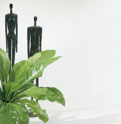ESG-Türverglasung Float hell für Türblatt 2110/860 mm - ESG-Türverglasung Float hell  4 mm ESG Folienverpackt