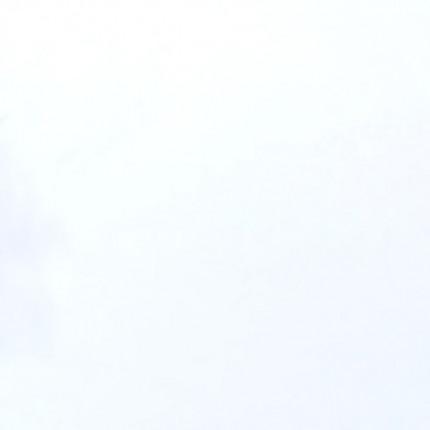 Falquon Fussboden Blue Line Max - Falquon Fußboden Blue Line Max, D2935 white, Hochglanz AC4, ohne Fuge 4 Stück pro Paket = 2,977 qm 30 Pakete pro Palette =89,31 qm   2