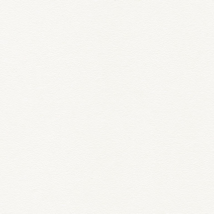 Kante  U1  Weiß Miniperl - Dünnkante  U1  Miniperl    Farbe  Weiß     RS geschliffen  | 2